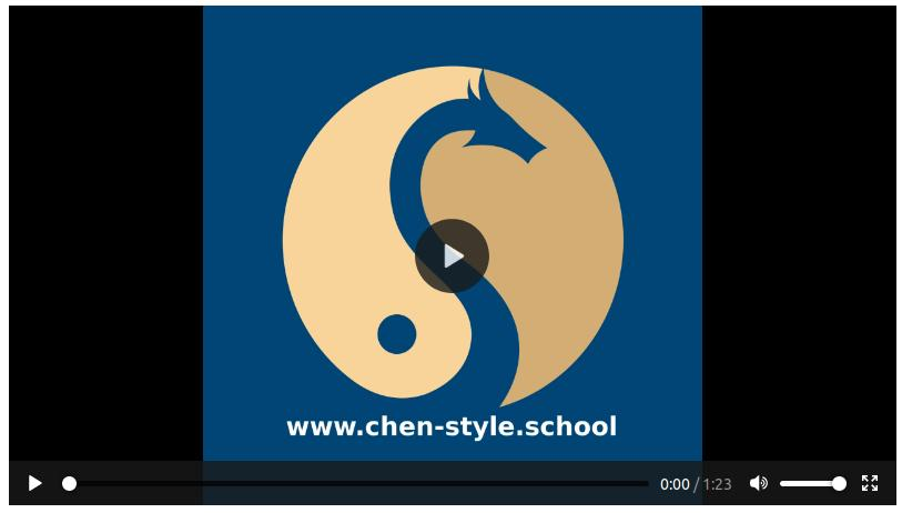 Chen Taiji Schule Chur Demo Video